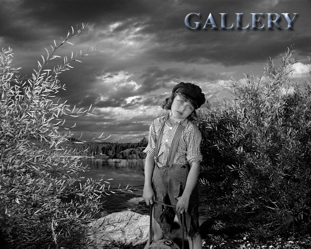 Enter Gallery Here